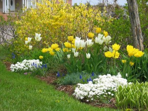 bigstock_Spring_Garden__106344